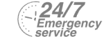 24/7 Emergency Service Pest Control in Weybridge, Oatlands, KT13. Call Now! 020 8166 9746